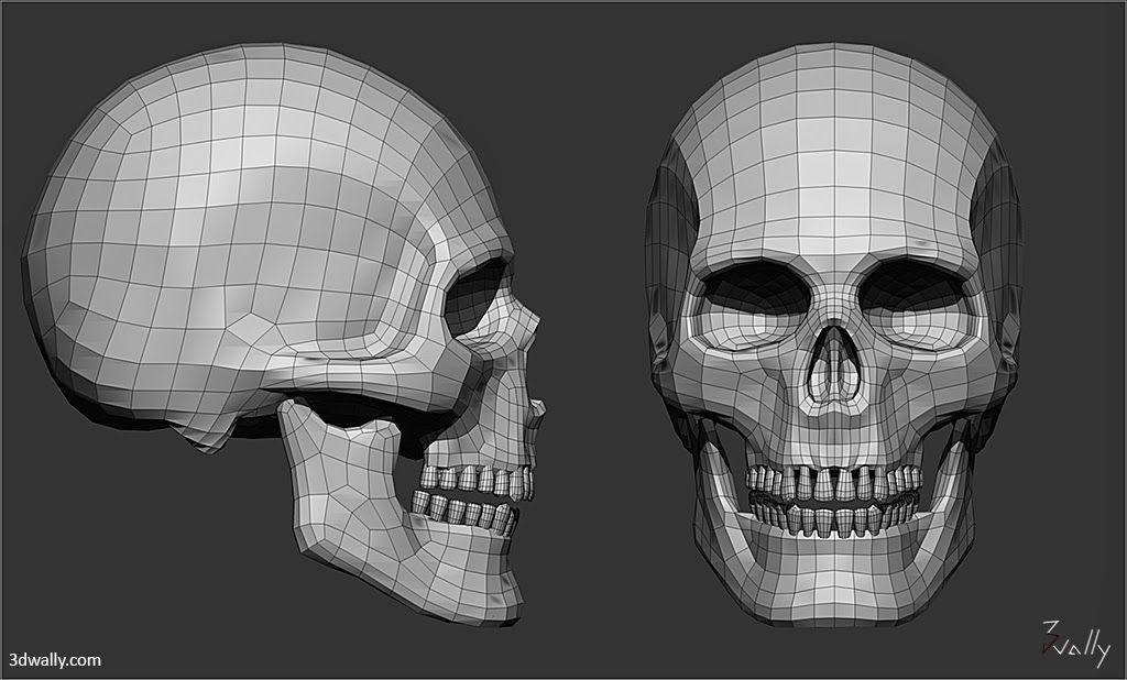 「skull 3dcg modeling」の画像検索結果 Skull model, Skull, Skull