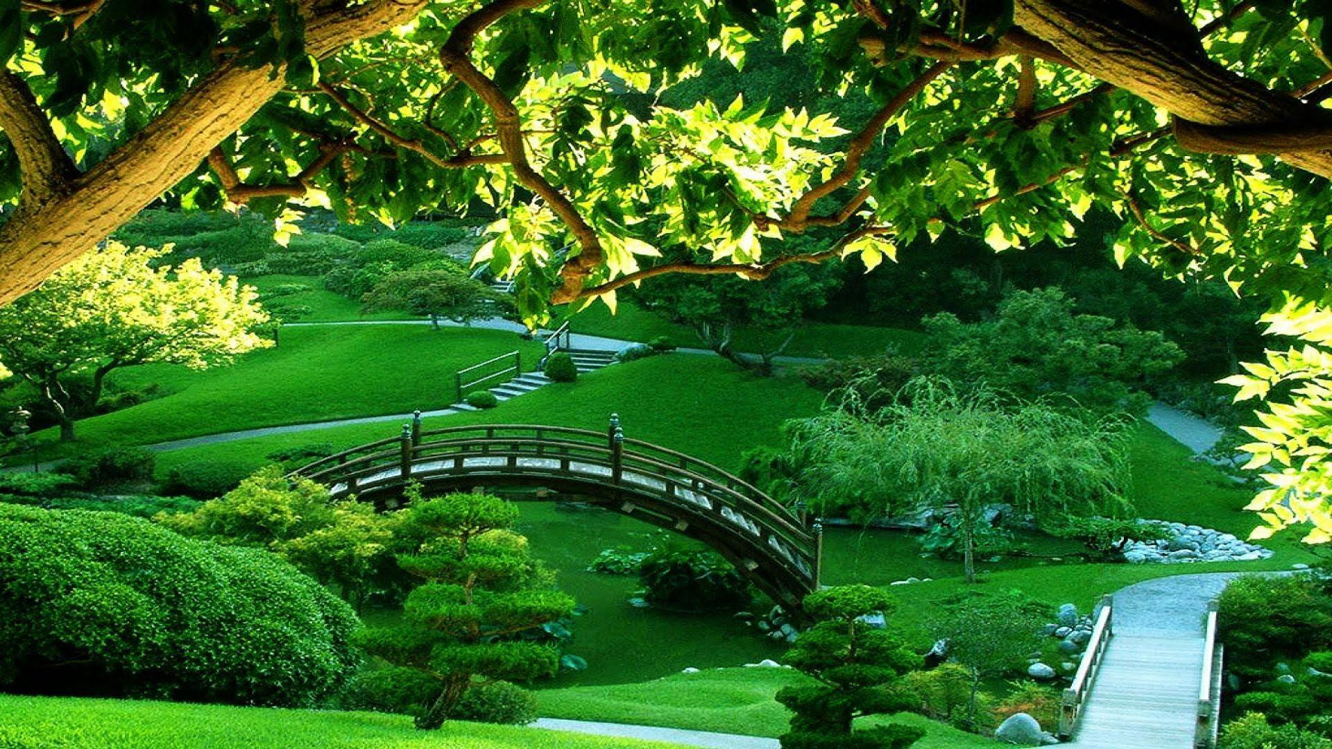 3 Hours Meditation Relaxing Music Bamboo Flute Background Spa Japanese Garden Beautiful Gardens Green Garden