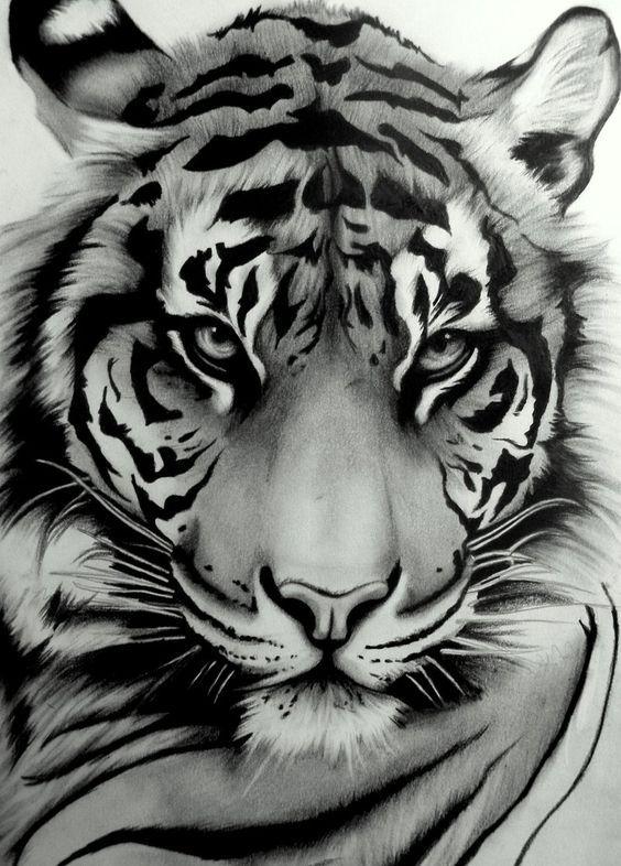 my tattoo sumatran tiger by artistelllie. Black Bedroom Furniture Sets. Home Design Ideas