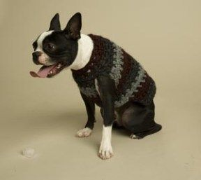 Free Dog Sweater Crochet Patterns #dogcrochetedsweaters Striped dog sweater crochet pattern #dogcrochetedsweaters