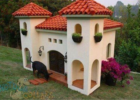 Fancy Doghouse Cool Dog Houses Dog Mansion Luxury Dog House