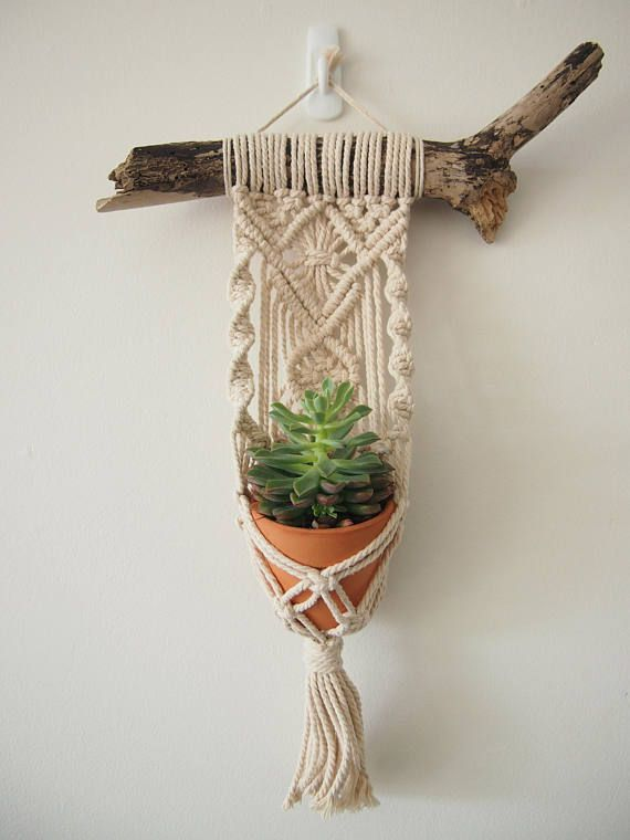 Photo of Macrame Plant Hanger Wall Hanging fits Mini Pot Indoor Vertical Garden Handcrafted Home Decor Interior Design Suspended Plants Woven