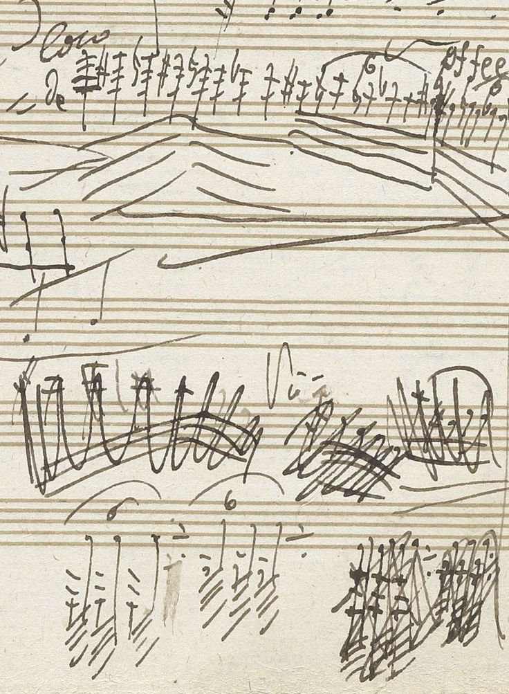 beethoven and other classical musicians For four years i studied the music of beethoven and other composers, learning  the rules of  in conducting research on the history of black classical musicians,.