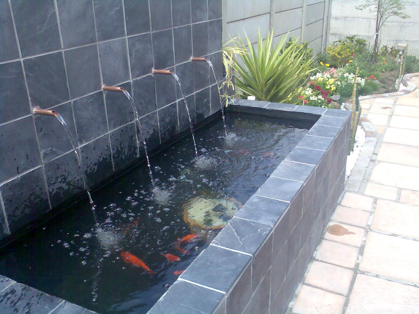 Formal koi pond formal pond in cape town south africa for Formal koi pond