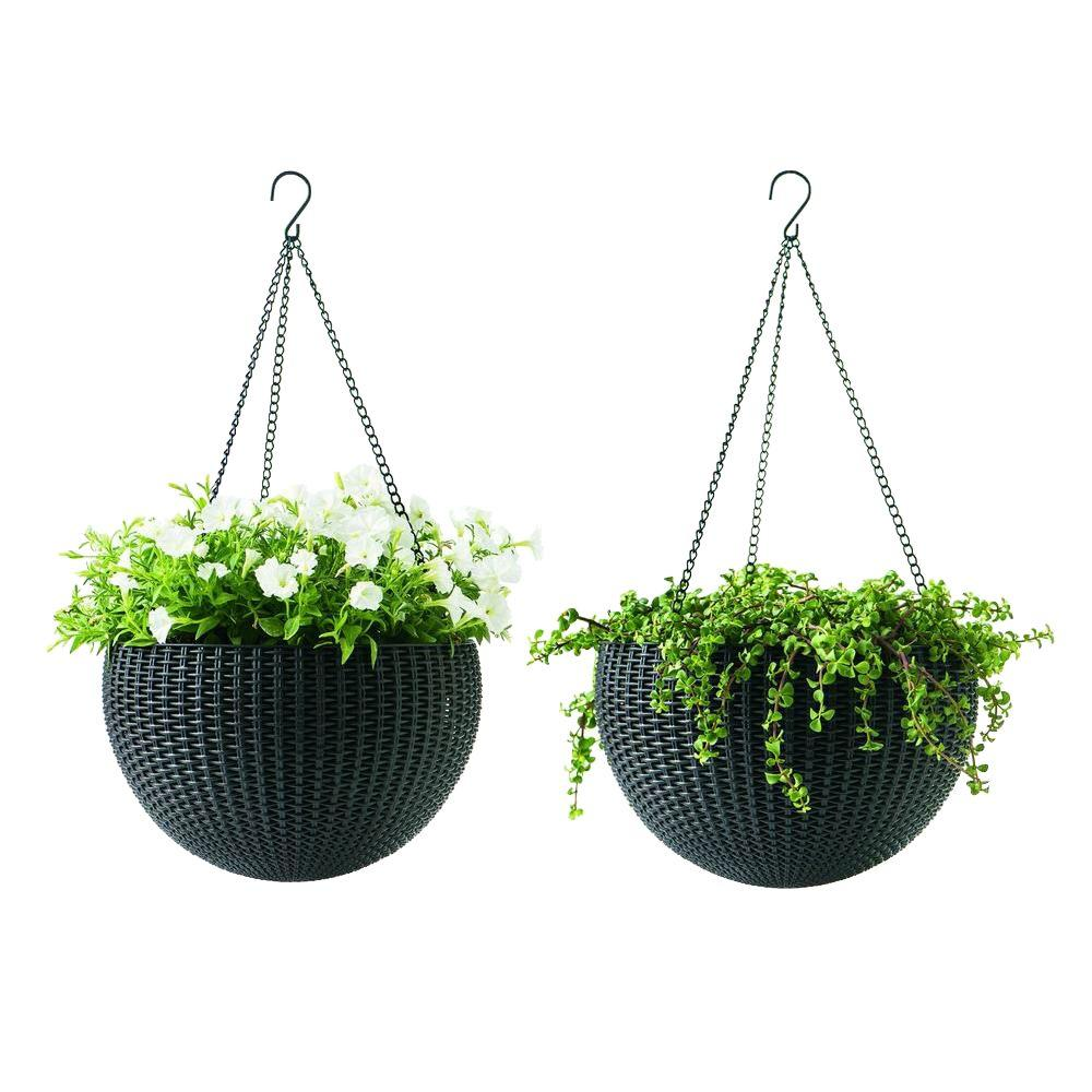Keter 13 8 In Dia Brown Resin Hanging Rattan Planter 2 Pack 221486 With Images Rattan Planters Hanging Planters Hanging Rattan