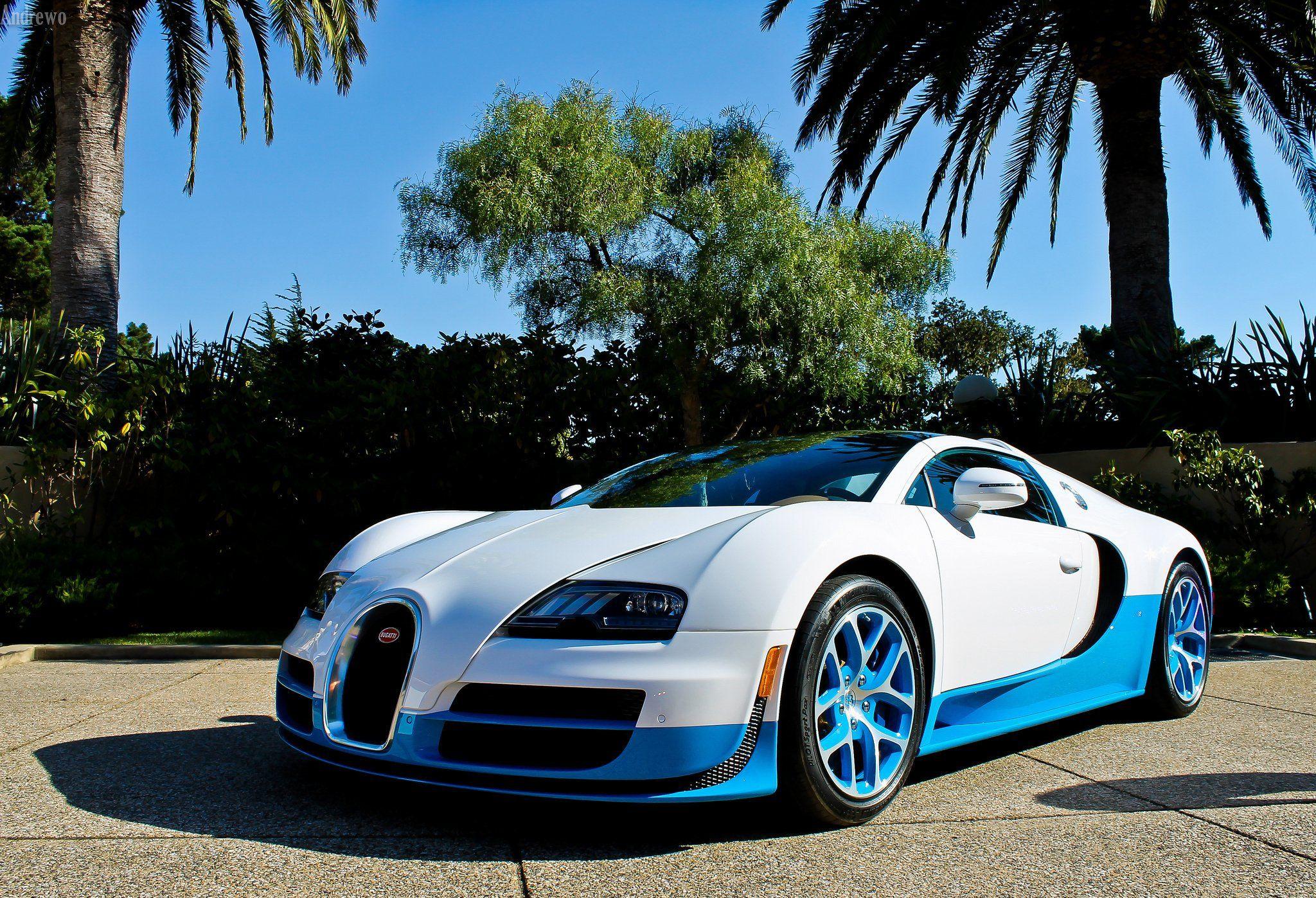 White Blue Bugatti Veyron Bugatti Veyron Vitesse Bugatti Veyron Bugatti