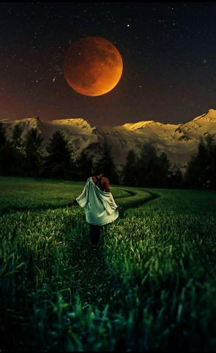 """Résultat de recherche d'images pour """"pinterest de clair de lune"""""""