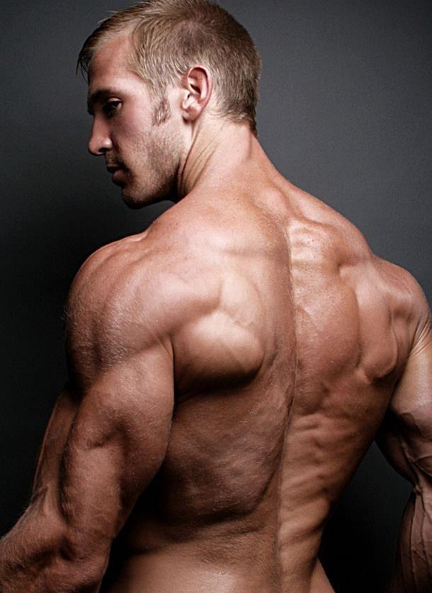 Aesthetic Overload: Adam Charlton Talks With | Anatomía, Anatomía ...