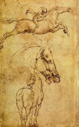 Leonardo da Vinci, Study of Horse | Art I like | Pinterest | Horse ...
