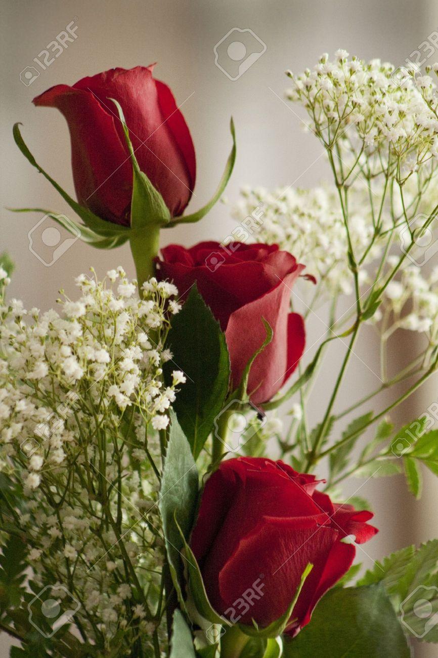 Drei rote Rosen Say Love