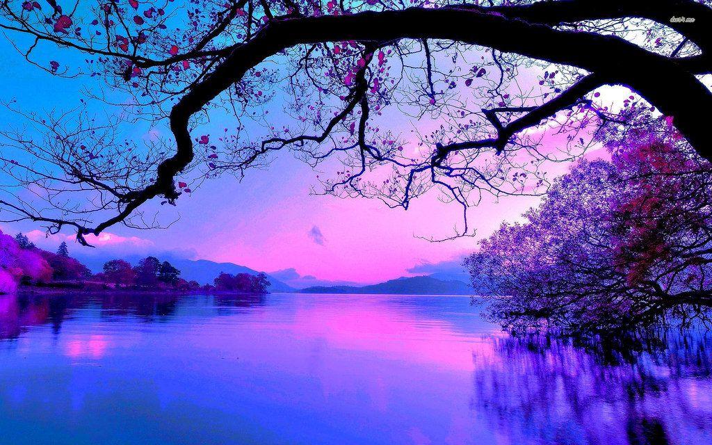 Purple Sunset Beautiful Photos Of Nature Sunset Wallpaper Beautiful Nature
