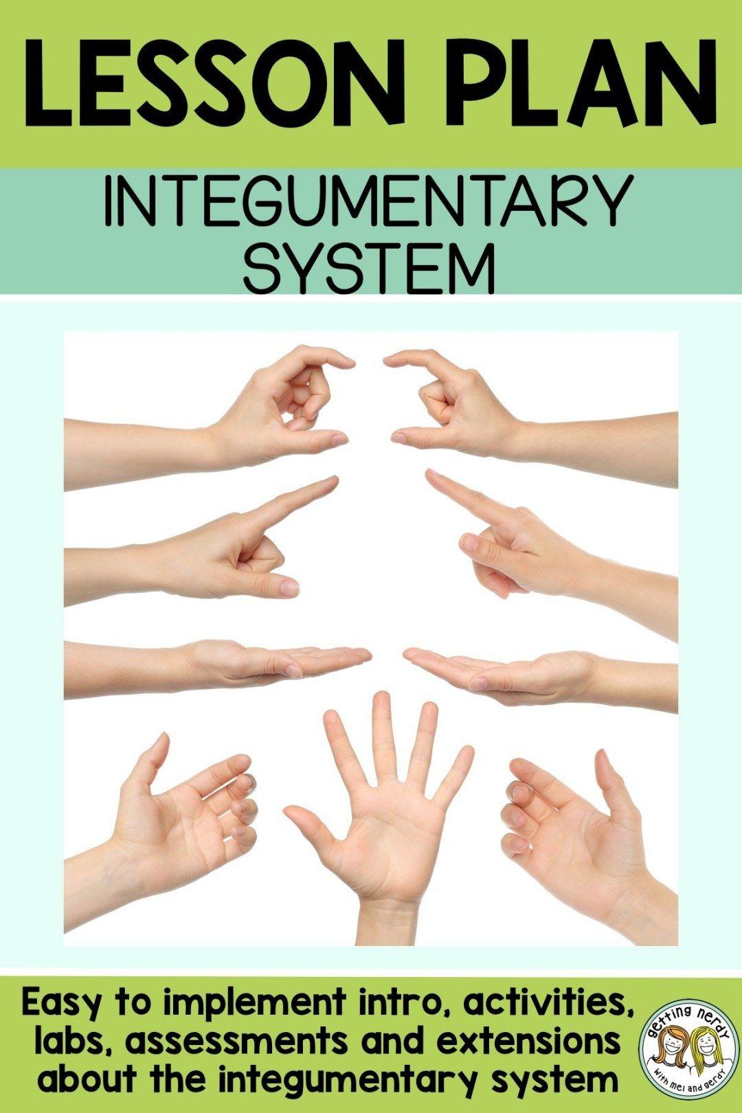 Lesson Plan Integumentary System Sensory Lab