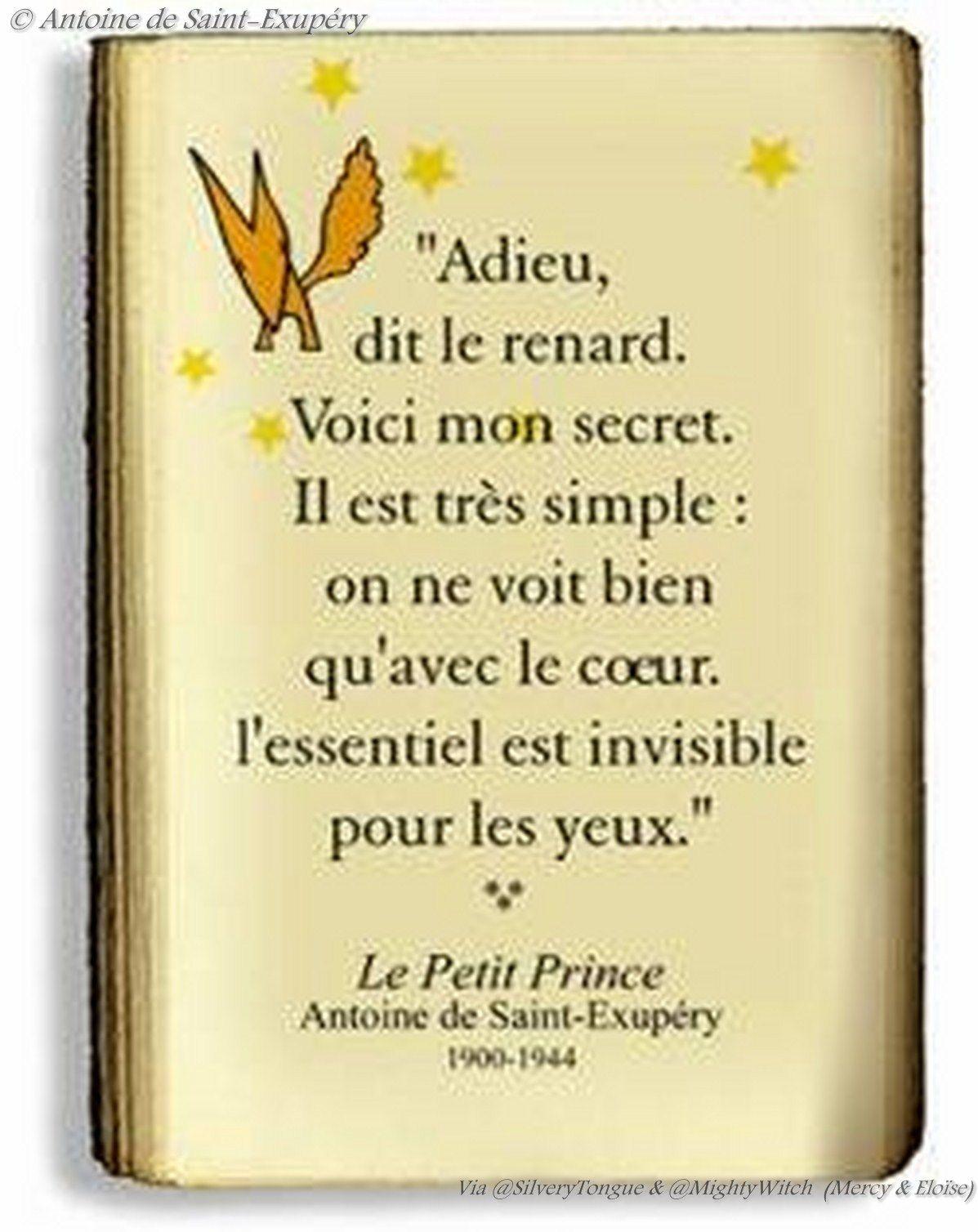 Le Petit Prince Pour Antoine De Saint Exupéry Le Petit