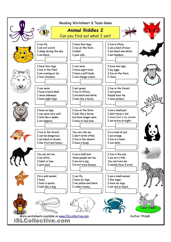 Animal Riddles 2 Medium Animal Riddles Riddles Animal Worksheets