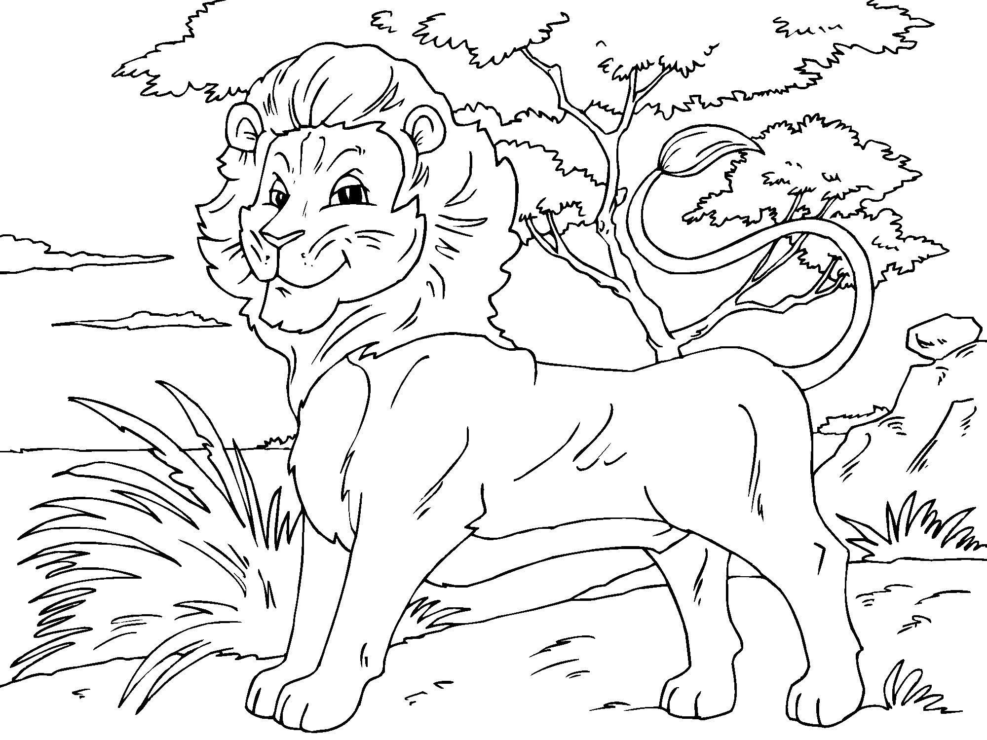 Lion Coloring Pages 1884 Free Printable For Kids