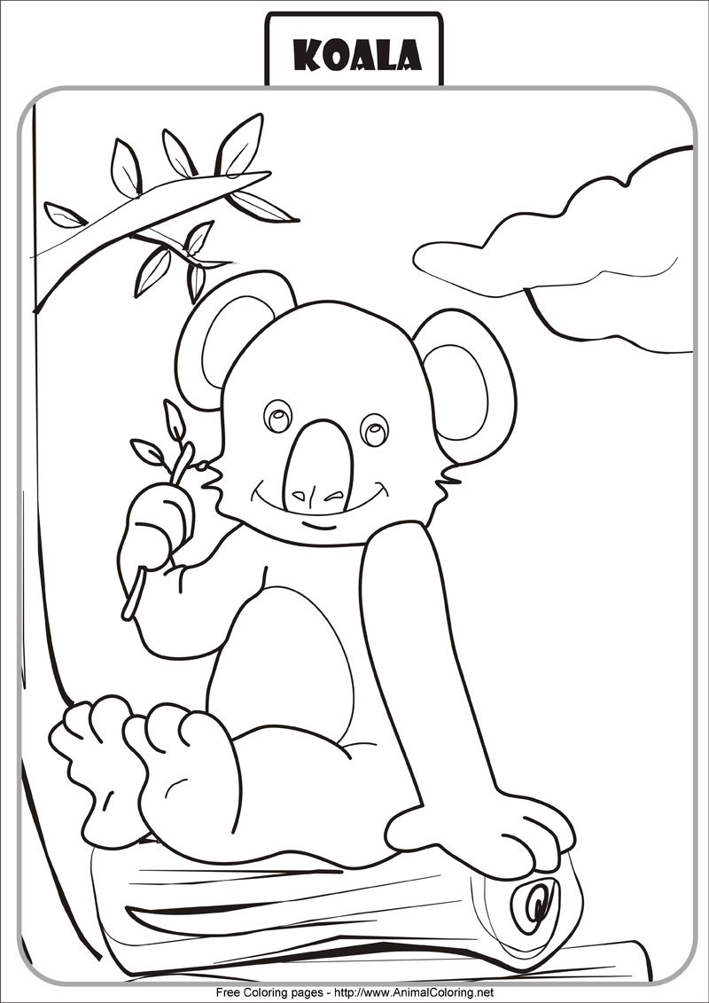 Free Printable Koala Coloring Pages For Kids Bear