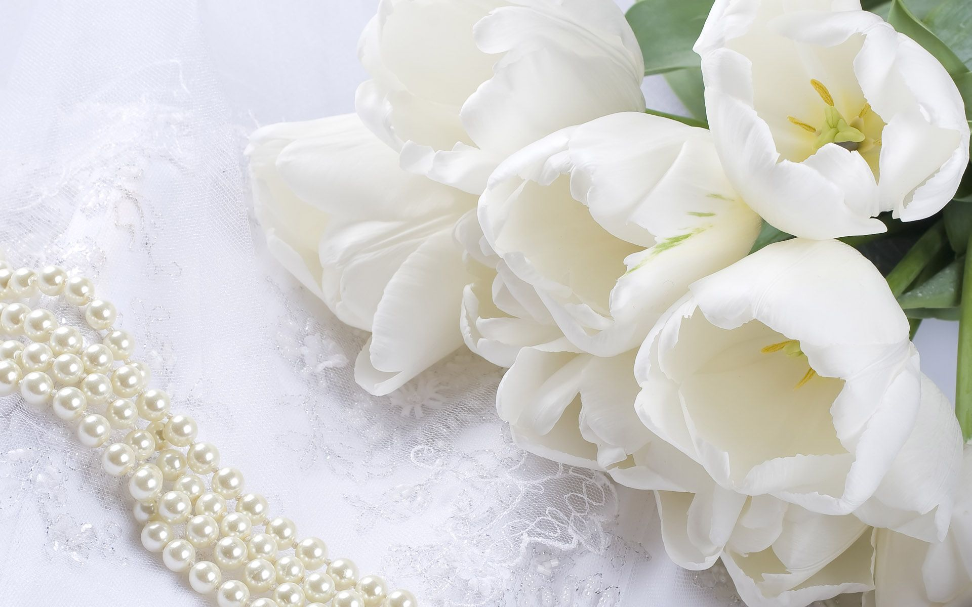 White flowers nice flowers white pinterest white flowers explore white tulips white roses and more dhlflorist Image collections