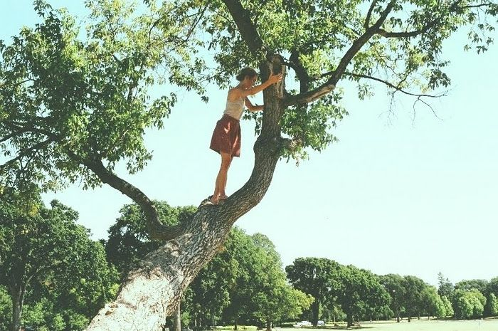 Climb Trees/ Be Girly/ Have Fun