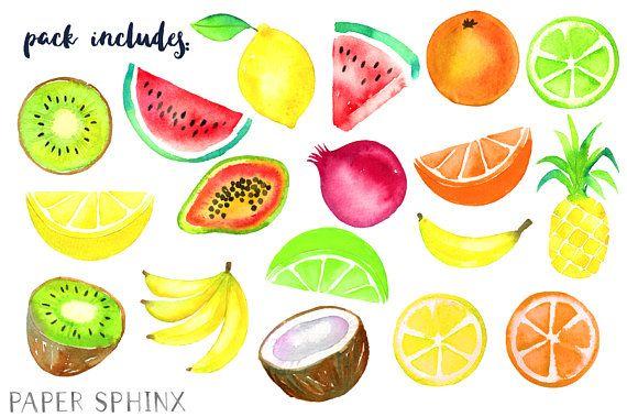 Watercolor Tropical Fruit Clipart Fruit Clip Art Pineapple
