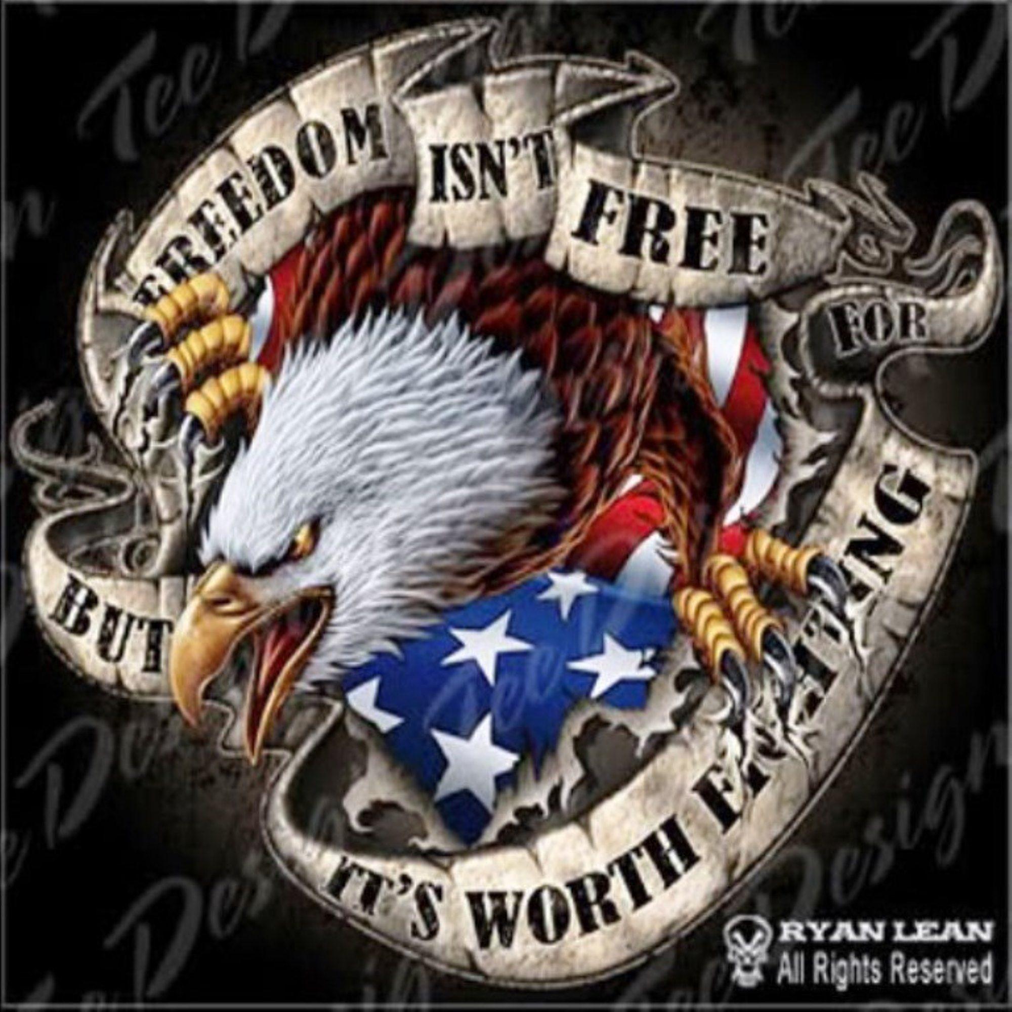 Freedom Eagle Patriotic Pictures Flag Cross Stitch Patriotic