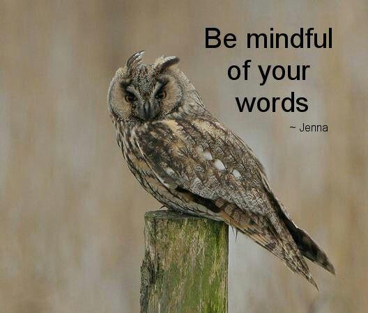 Mind your words   Animals, Birds, Owl