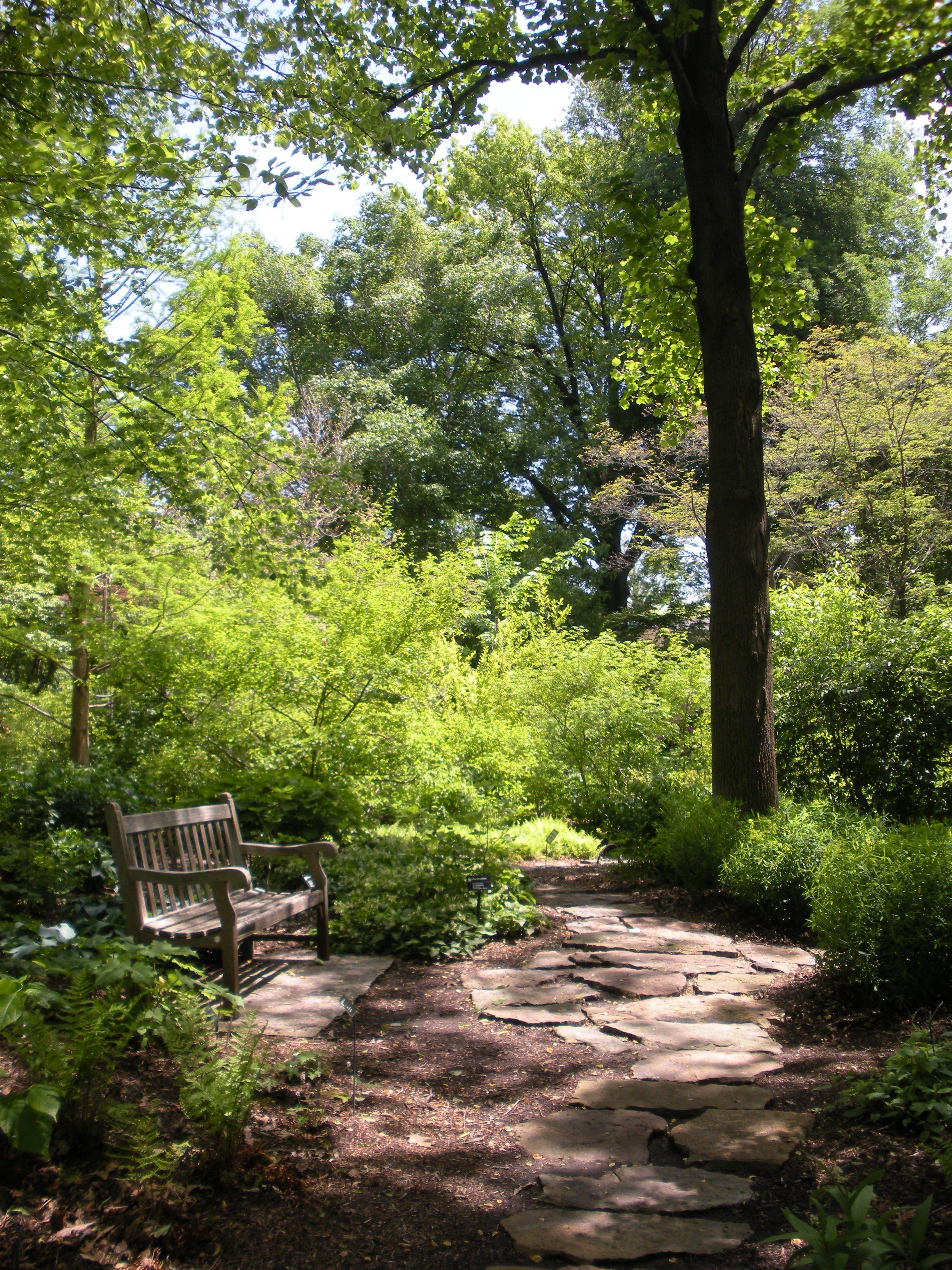 Woodland Gardens A Gallery Of Photos Woodland Garden 400 x 300