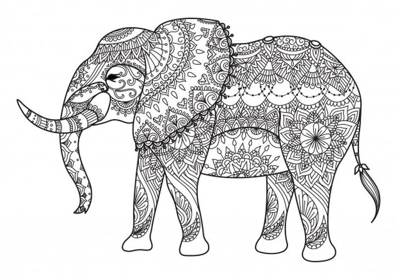 Elephant Coloring Pages Ideas Wallpaper Iphone