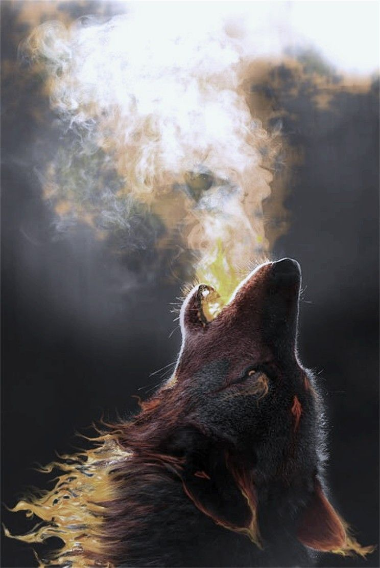 Click Through The Large Version For A Full Screen View Wolf Wallpaper Wolf Howling Wolf Spirit