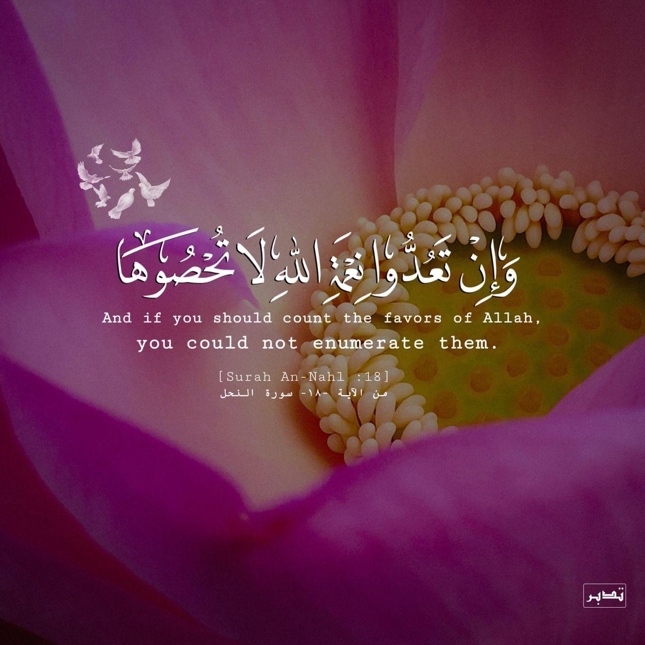 الحمد لله علي جميع نعمه ما ظهر منها وما بطن Islam Quran Islamic Quotes Noble Quran