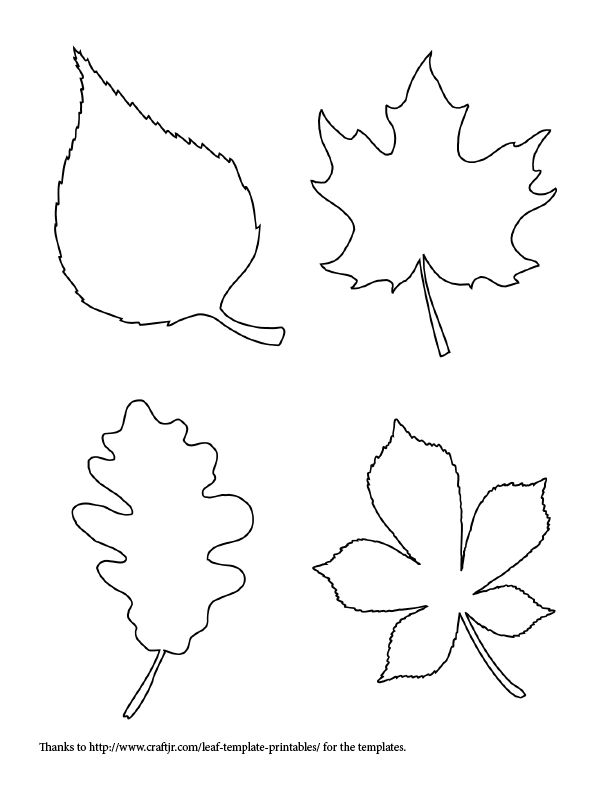 Oil And Blue Fall Leaf Line Drawing Template For Fall Crafting And
