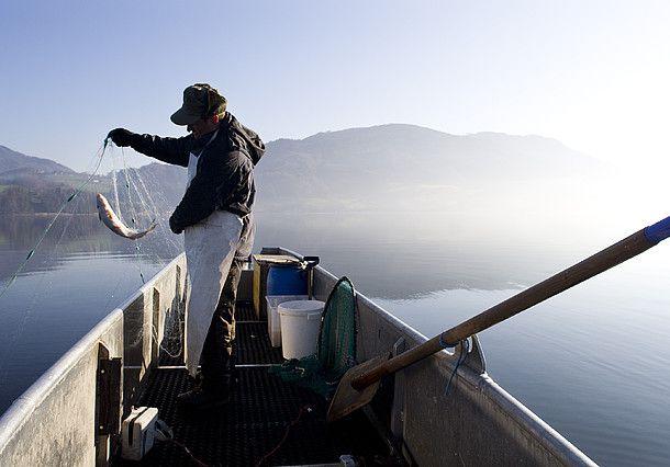 Fischen in Österreich wird von Anglern auf der ganzen Welt
