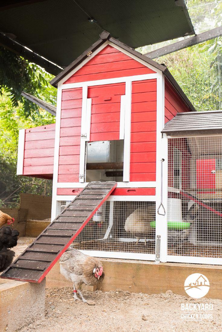 The Taj Mahal™ | Chicken house, Backyard chicken coops ...