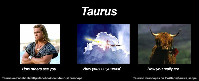 Daily Horoscopes Funny Zodiac Meme Taurus Memes Zodiac Memes Aries Funny