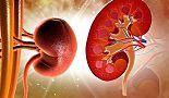 Cómo limpiar los riñones con remedios naturales - Mejor Con Salud