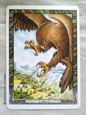 L Oracle Des Druides De Philip Et Stephanie Carr Gomm Tarot Cartes Oracle Peintures Animalieres