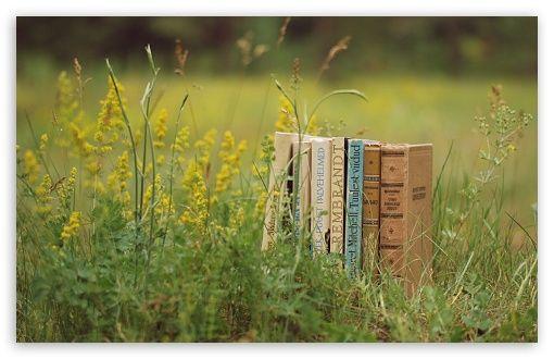 Old Books Outdoors Hd Desktop Wallpaper Widescreen High