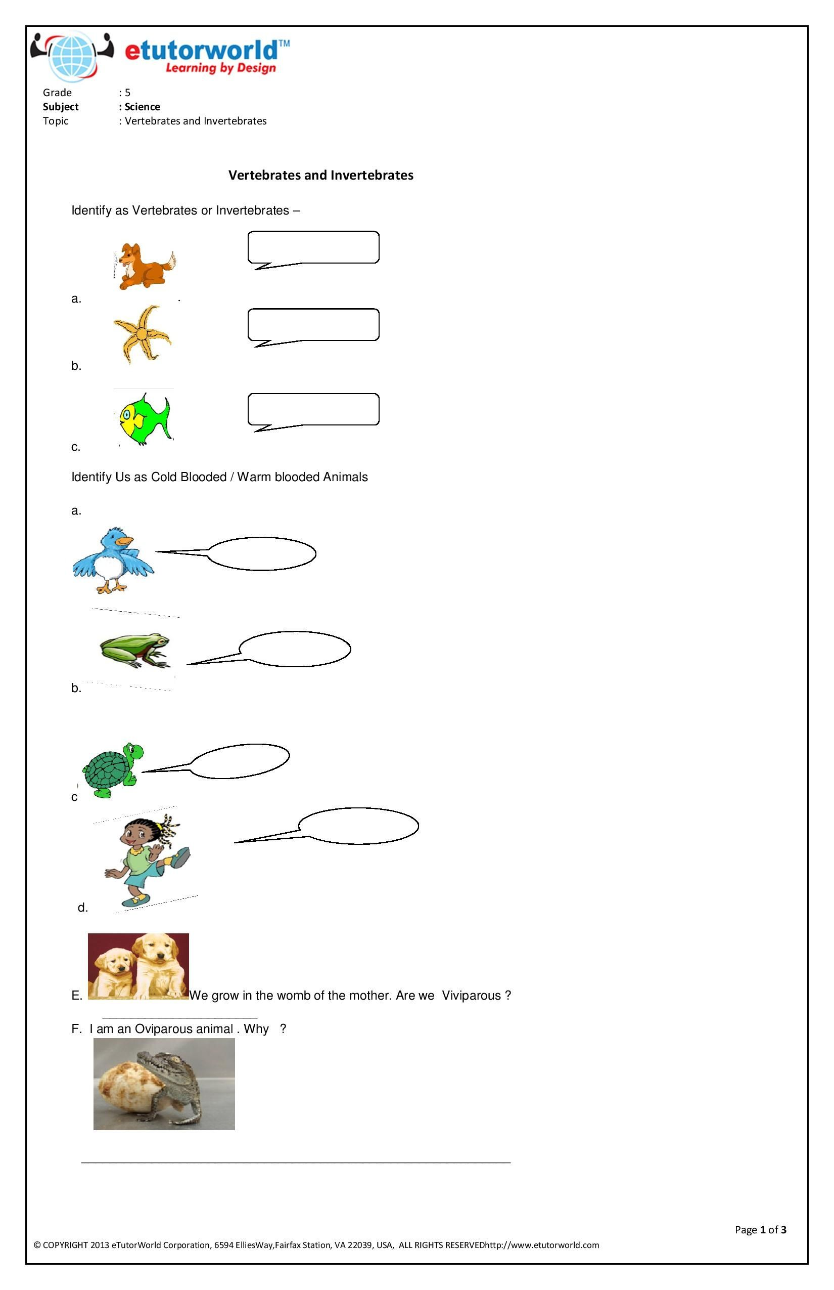 This Fun Worksheet Is About Living Beings Go To