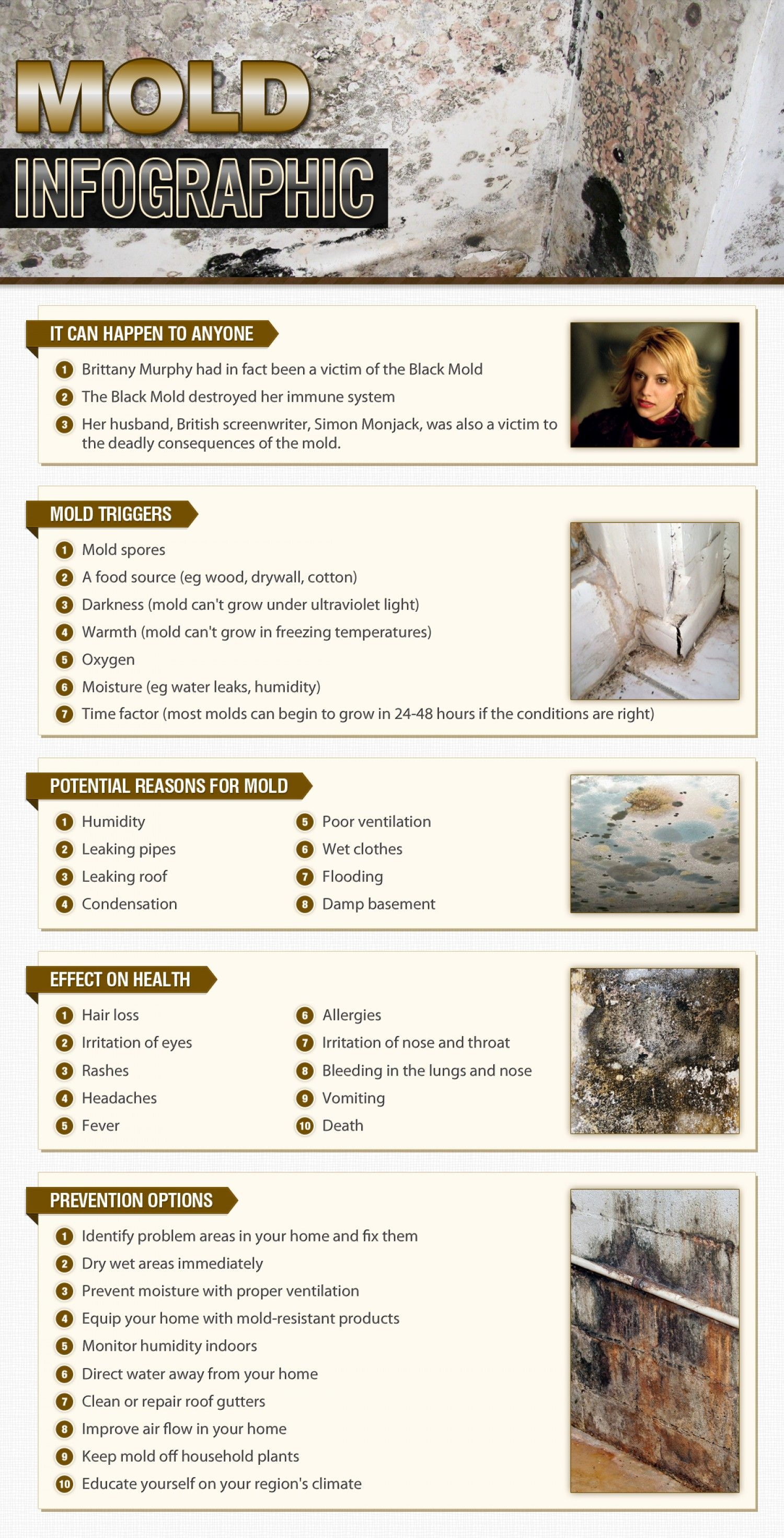 Mold Infographic Black Exposure Test Toxic