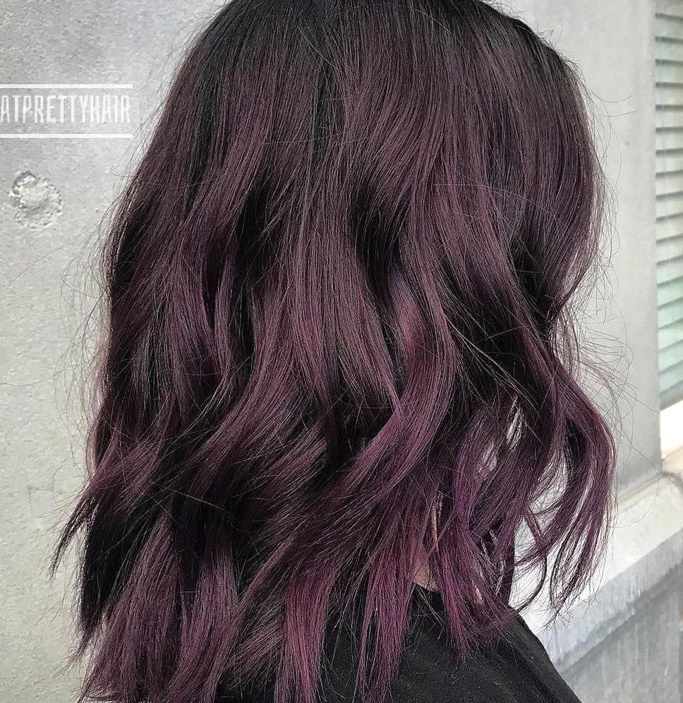 Medium Black Hair With Purple Tint In 2020 Dark Purple Hair Burgundy Hair Hair Color Burgundy