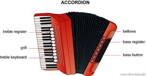 Diagram: Accordion | Accordion | Pinterest