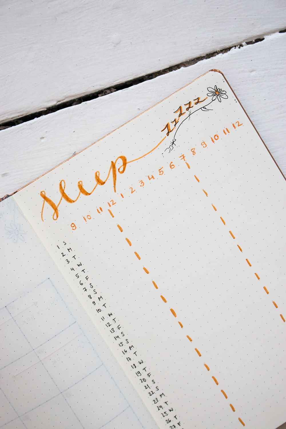 Plan with me | Bullet Journal Setup Juli 2018 - tea & twigs