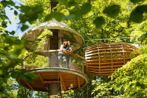 A Minimalist TreeHouse, More Wire Than Wood