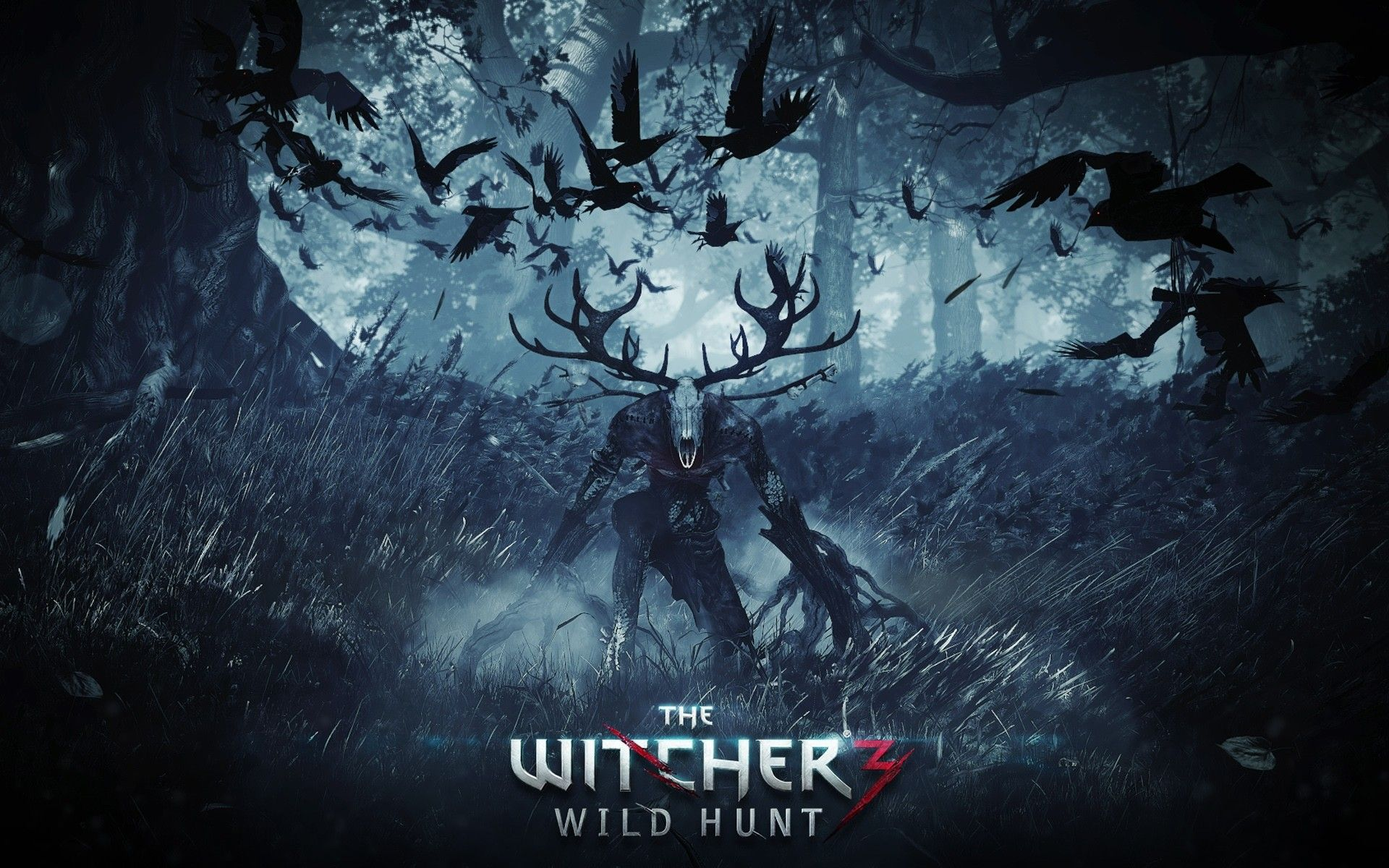 The Witcher Iii Wild Hunt E3 Trailer The Witcher Wild Hunt The