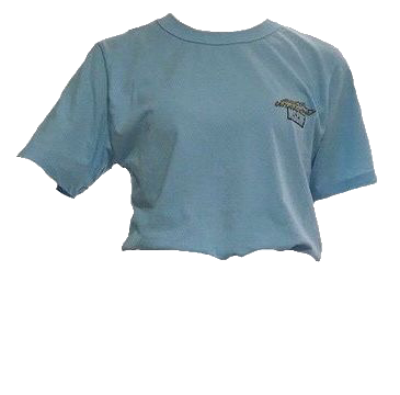 Pin By Emilia On Outfits T Shirt Png Aesthetic Shirts Shirts