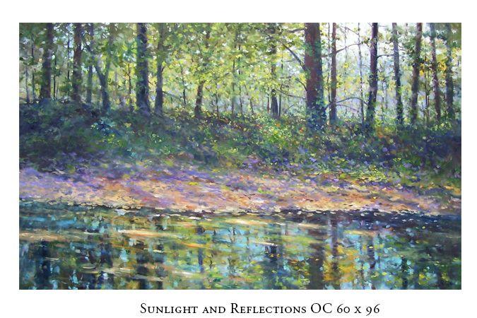 sunlightandreflections675