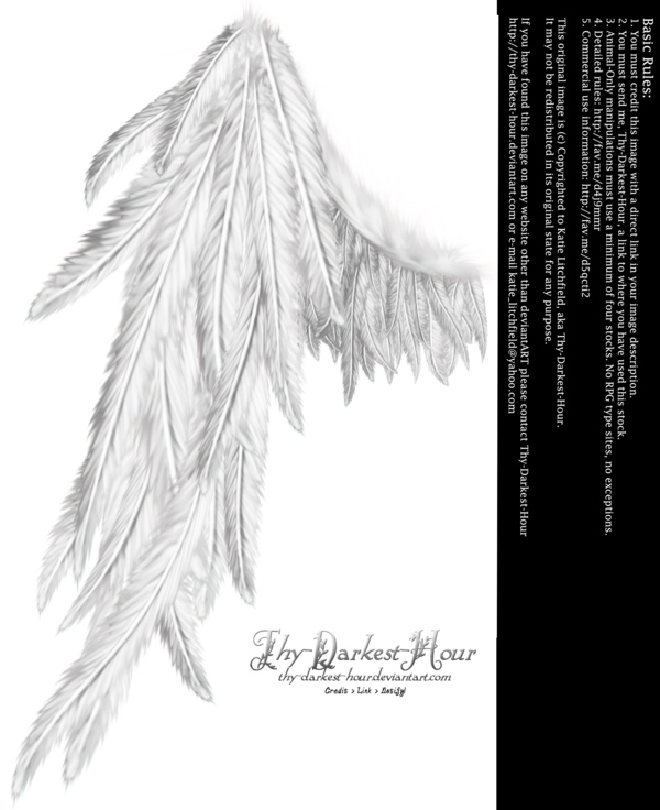 Draped Wing White By Thy Darkest Hour On Deviantart Wings Wings Tattoo Tattoo Inspiration