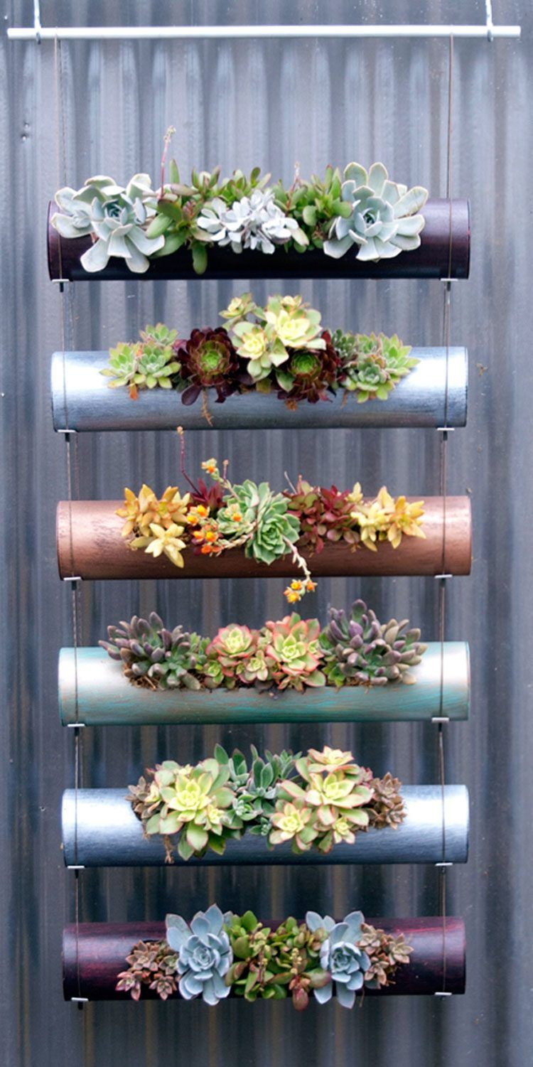 Diy Succulent Vertical Garden Made Of Standard PVC Pipes