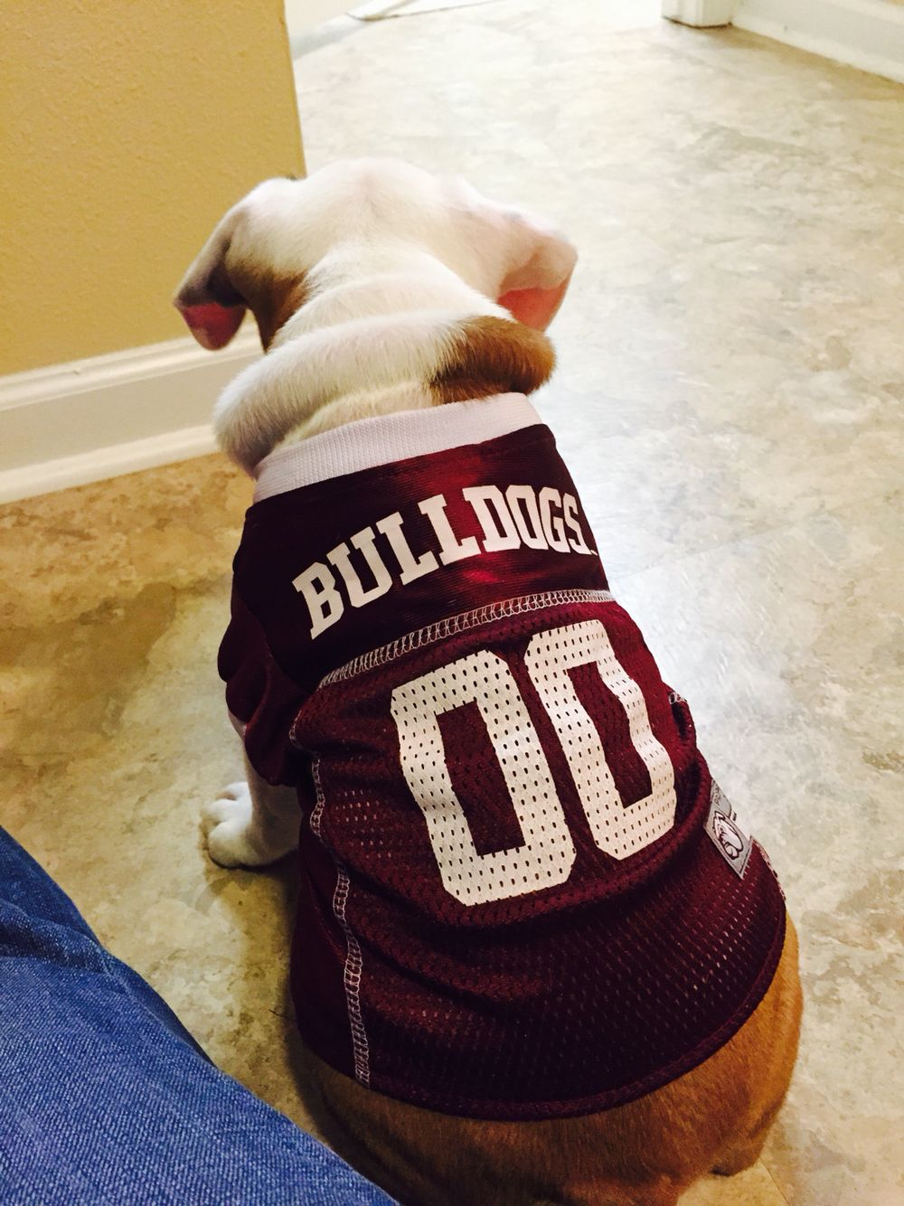 Supporting Mississippi State