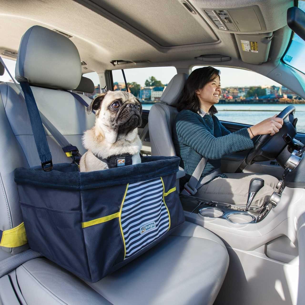 Rover Dog Booster Seat Nantucket Stripe