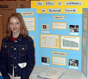 make a science fair project about the five senses learn how the science fair projects selah k12 wa